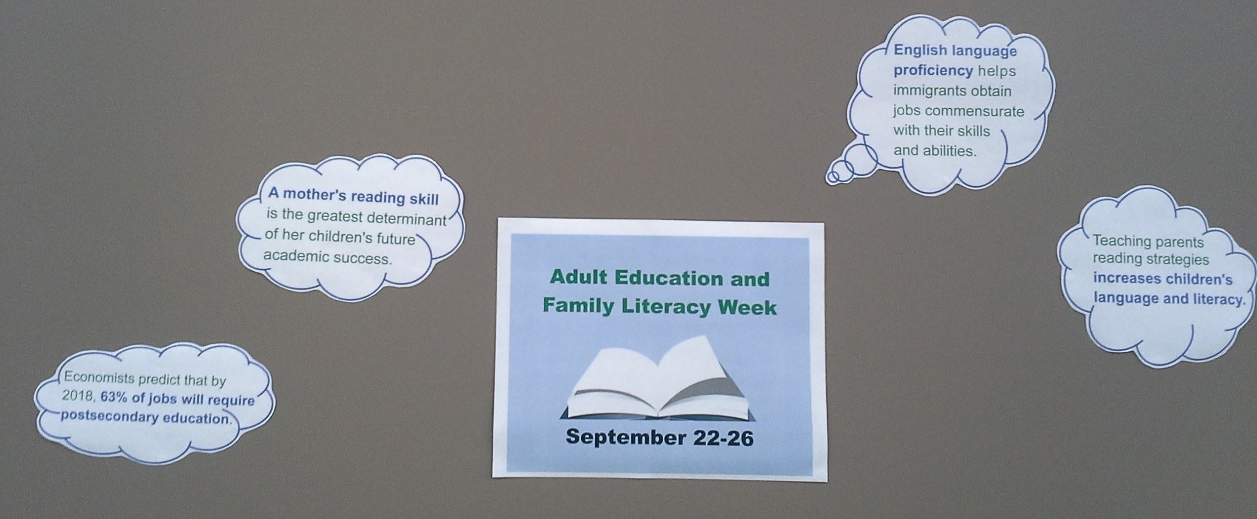 Adult Education and Family Literacy facts